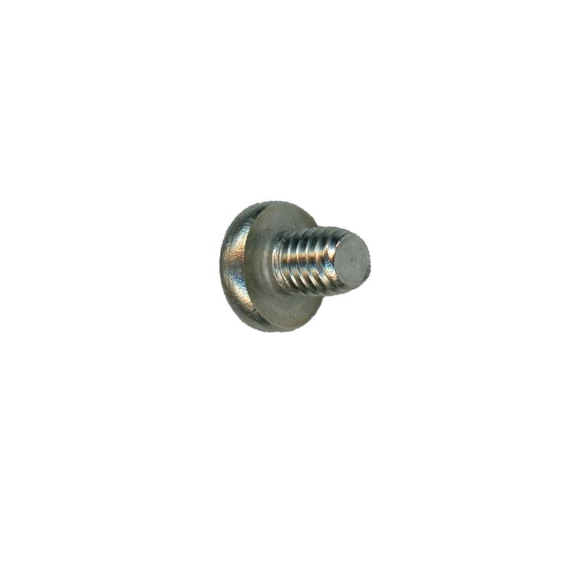 MSR WhisperLite Burner Cap Screw