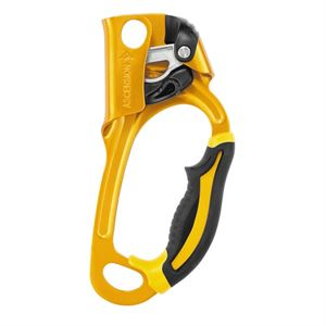 Petzl Ascension Gold (right-hand)