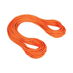 Mammut 9.8mm Crag Dry Safety Orange/Boa