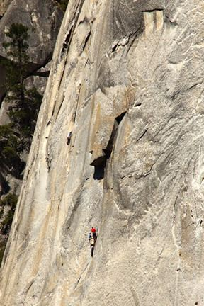 Karabiners DMM Climbing for rock climbing x2
